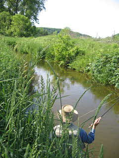 Small trout stream in West Central Wisconsin
