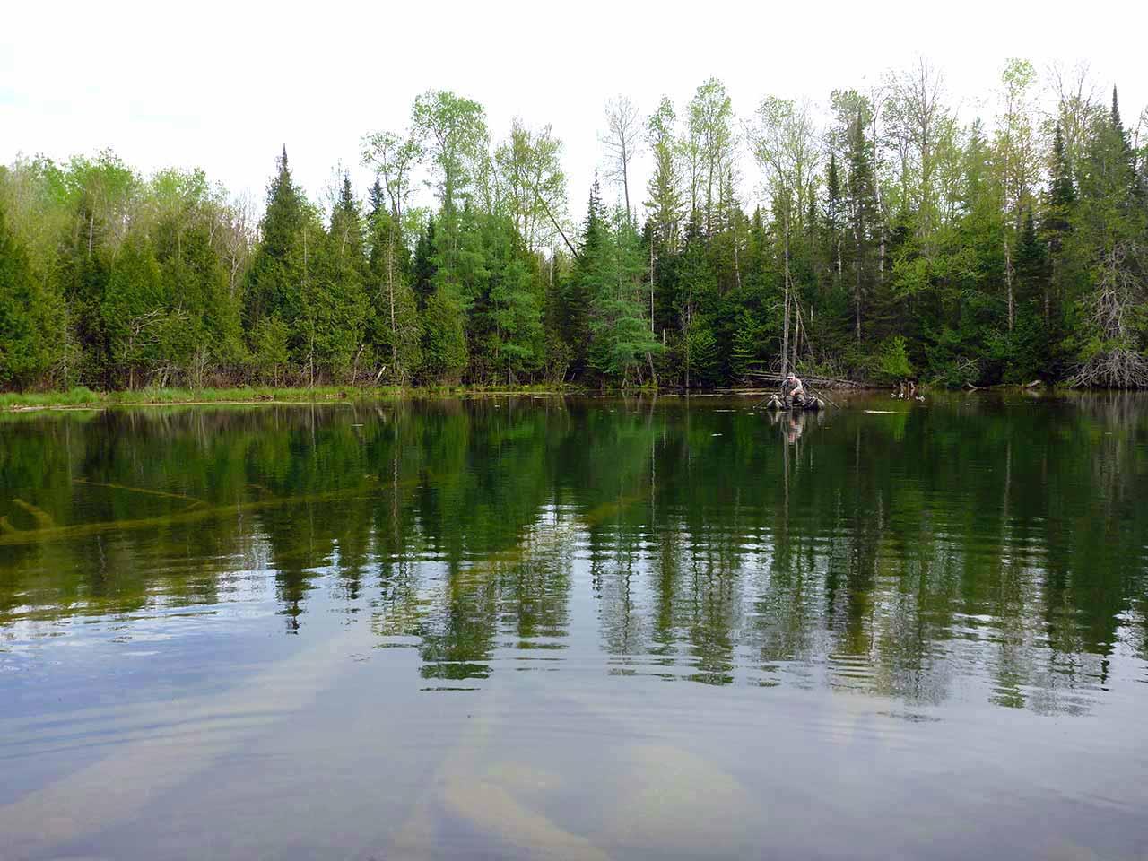 spring-pond-01w