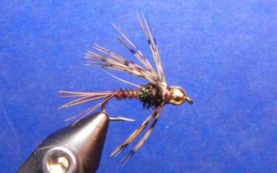 Bead Head Pheasant Tail Nymph