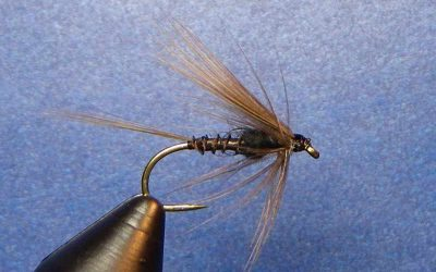 Black Stone Wet Fly