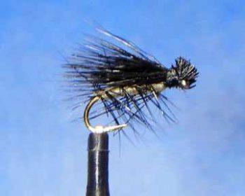 Little Black Caddis fly pattern