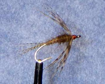 March Brown fly pattern
