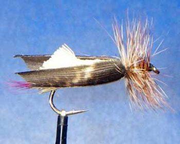 No Foam Hopper fly pattern