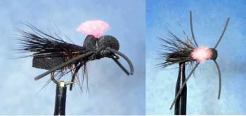 RM Cricket fly pattern