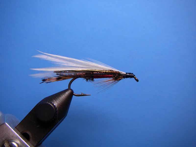 Royal Coachman Streamer