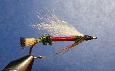 Royal Coachman Hairwing Streamer