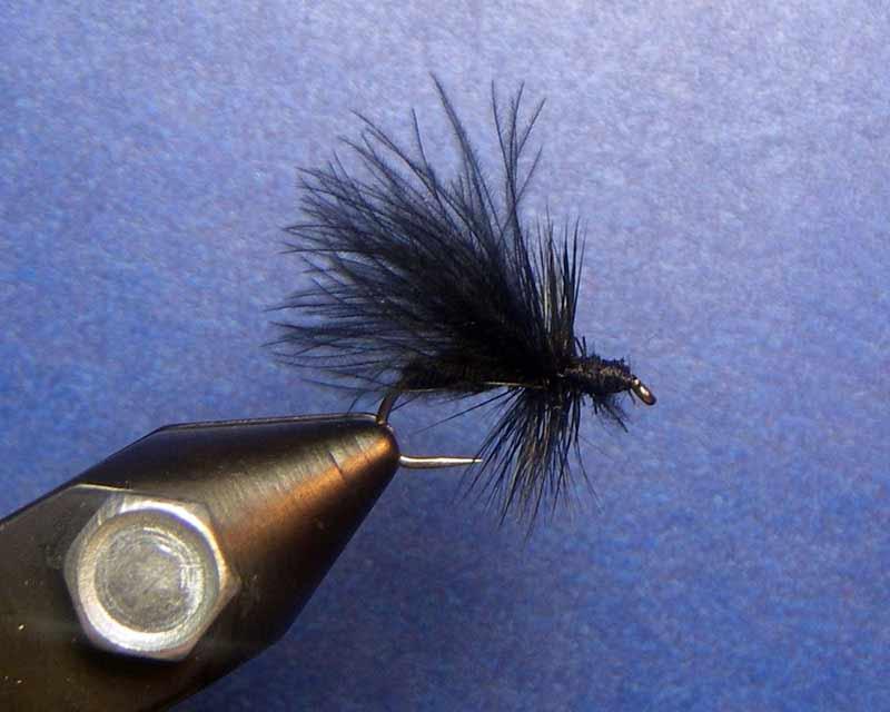 Black Stone Fly pattern